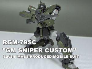 Rgm79sc00